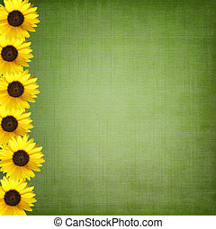 background with sunflowers - Green shabby background with...