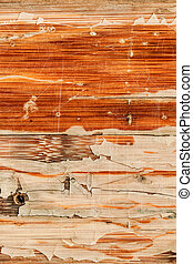 Old Varnished Weathered Wooden Panel Cracked Scratched...