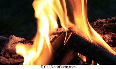 Beautiful fire flames in nature - Beautiful fire flames in...
