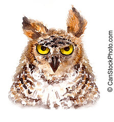 Owl watercolor illustration on a white background. - Owl,...