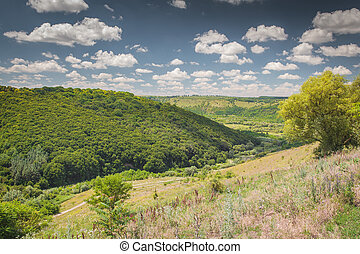 Nature in Western Ukraine - Beautiful nature south east of...
