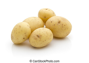 Potatoes on the white background New harvest