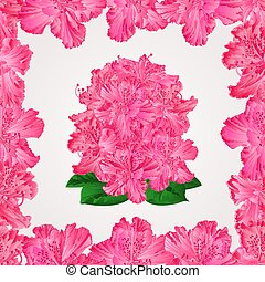 Seamless texture rhododendron in a frame vectoreps -.