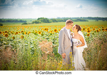 wedding in sunflowers field - The wedding ceremony beautiful...