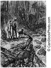 Bushman and his companion watched, vintage engraving. -...