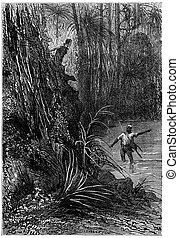 Bushman and his companion, vintage engraving - Bushman and...