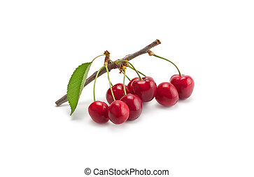 sprig of sweet cherry - sprig of sweet ripe cherries...