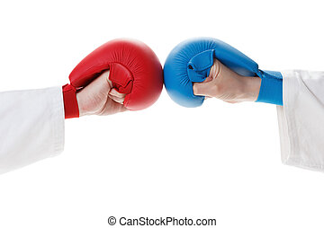 Karate sports glove and fist - Iisolated Sports Gloves...
