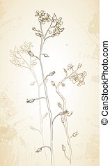 Vector background of flowers