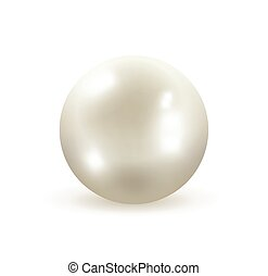 White pearl vector illustration - Pearl isolated on white...