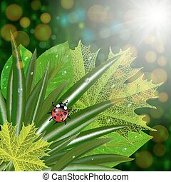 Green leaves with ladybug - Illustration of green leaves...