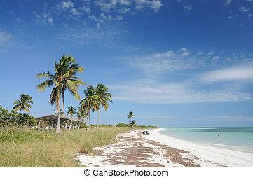 Beach at Bahia Honda, Florida Keys, USA