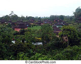 Cabaa - Rainforest - Ruta del Sol - Ecuador