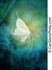 White butterfly on an abstract background photographed close...