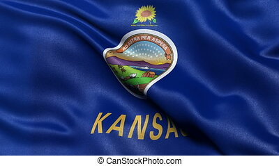Kansas flag seamless loop