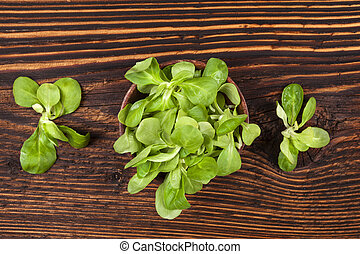 Fresh green corn salad. - Fresh green corn salad in wooden...