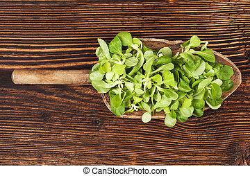 fresco, verde, campo, salad.,