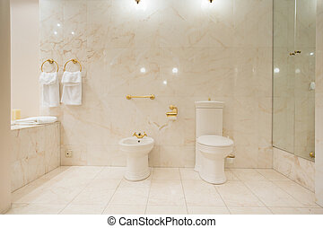 Toilet interior with marble tiles - Horizontal view of...