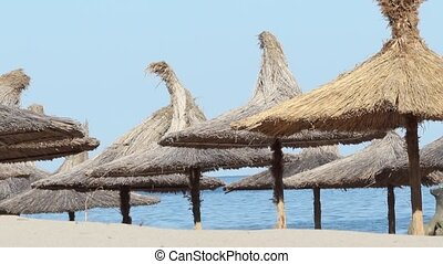 Thatched Umbrellas on Beach - Thatched umbrellas on beach...