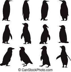 Collection of penguins' silhouettes - Vector image of a...