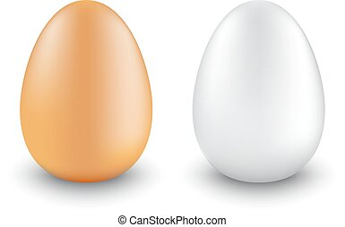 two chicken eggs realistic different colors on a white...