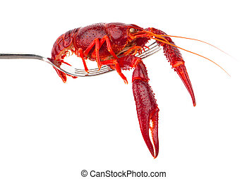 crawfish on fork isolated on white background