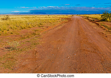 Old Dirt Road in New Mexico