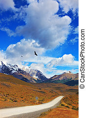 Andean condors fly over the lake - Summer day in the...