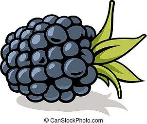 Blackberry - Vector illustration of fresh, ripe blackberry...