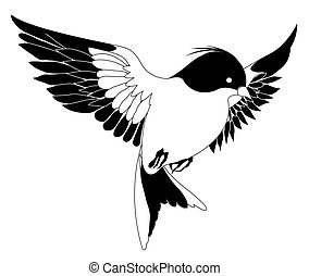 bird - drawing of black bird in a white background