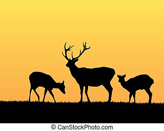 Deer background - Beautiful sunset background with deer...