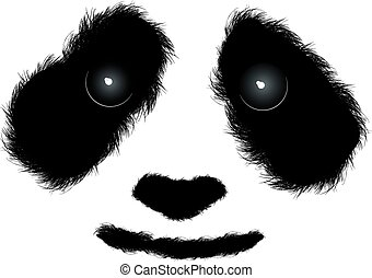 Fluffy panda face isolated