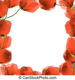 Red poppy frame - Red poppies frame design for text of...