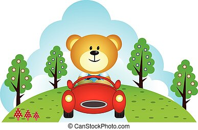 Little bear driving a car