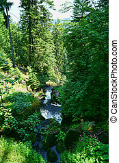 Triberg Waterfalls in the Black Forest, Germany-13 - A...