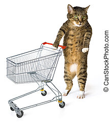 consumer cat with shopping cart on white background