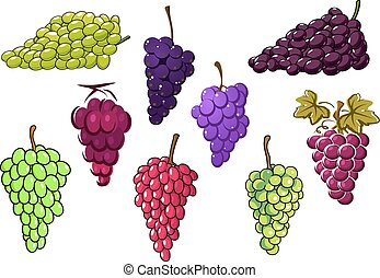 Bunches of green and red grapes - Bunches of sweet green and...