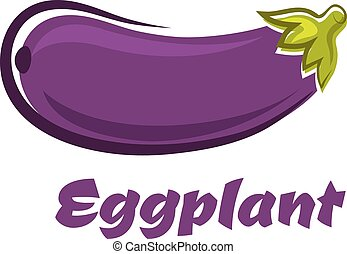 Fresh dark violet eggplant vegetable - Ripe fresh eggplant...