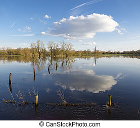 flooded land - floodplains of a small river in the...