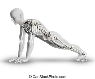 3D male figure with partial skeleton in yoga pose