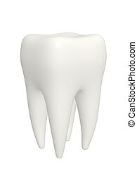 Tooth - isolated over white
