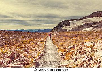 Hike on Mt.Rainier - Hike on Mt Rainier