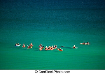 Kayakers Paddle with Dolphins - Dolphins and Kayakers in...