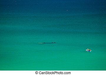 Surfer in Byron Bay Australia - Surfer in Byron Bay