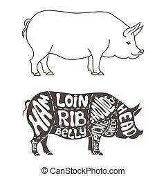 Pork cuts diagram. Hand drawn butcher cuts scheme