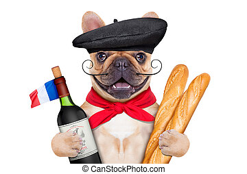 french wine dog - french bulldog with red wine and baguette...