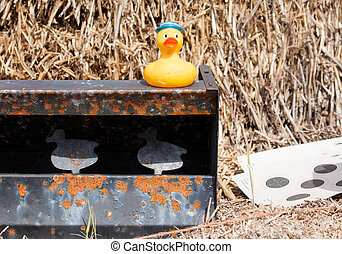 Ducks on a target shooting range