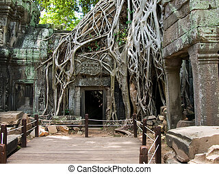 Cambodia picture - The picture of antient cambodian temple...