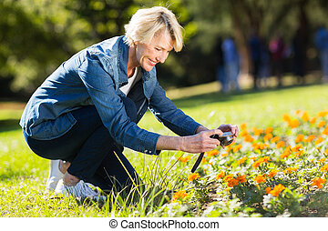 senior woman taking photographs of flowers - pretty senior...