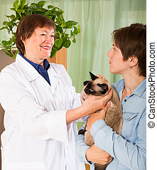 girl with cat having appointment at veterinary clinic -...